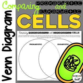 Comparing Prokaryotic and Eukaryotic Cells Venn Diagram Activity