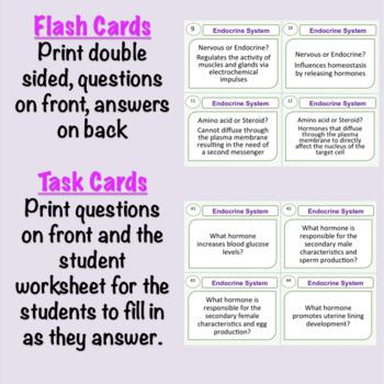 Endocrine System Task Cards Glands and Hormones by Brilliant Biology