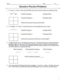Punnett Square Practice Problems Worksheet