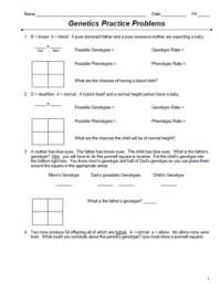 Punnett Square Practice Problems Worksheet - resultinfos
