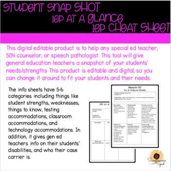 Iep At A Glance Speech Worksheets  Teaching Resources TpT