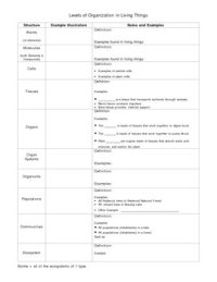 Levels Of Organization Worksheet Middle School. Levels ...