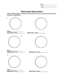 Microscope Observation Lab Sheet by Mrs Ruff | Teachers ...
