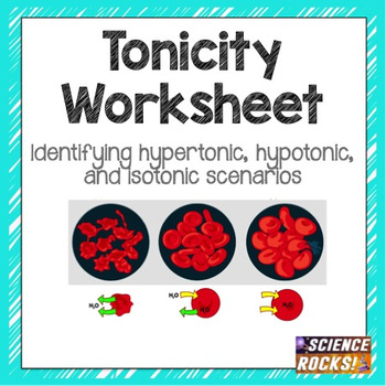 Cell Transport Osmosis Tonicity Worksheet by Science Lessons That Rock