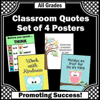 Owl Themed Classroom Posters with Motivational Quotes  Rules TpT