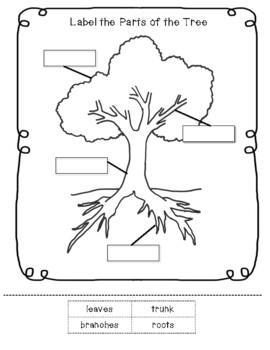 Parts Of A Tree Worksheet By Little Learning Lane Tpt