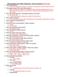 Photosynthesis and Cellular Respiration Test, Review ...