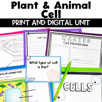 Animal Cell Project Rubric Teaching Resources Teachers Pay Teachers