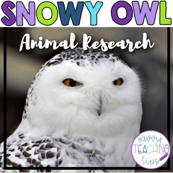 snowy owl Worksheets  Teaching Resources Teachers Pay Teachers