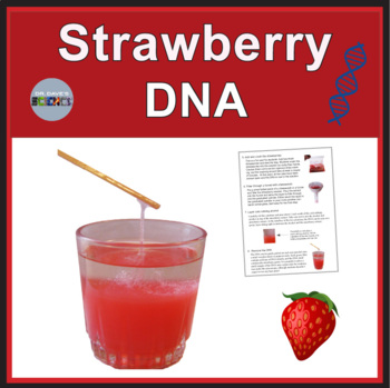 Strawberry DNA Extraction by Dr Dave\u0027s Science TpT