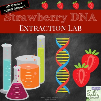 Strawberry DNA Extraction Lab by What\u0027s Cooking with Kids TpT
