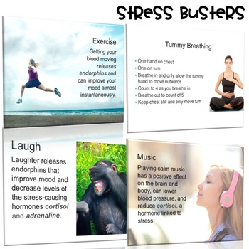 Stress Management Powerpoint by The Counseling Teacher Brandy TpT