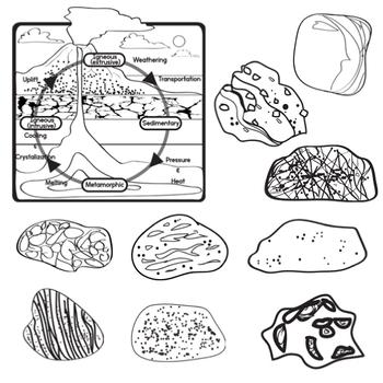 sedimentary rock diagram
