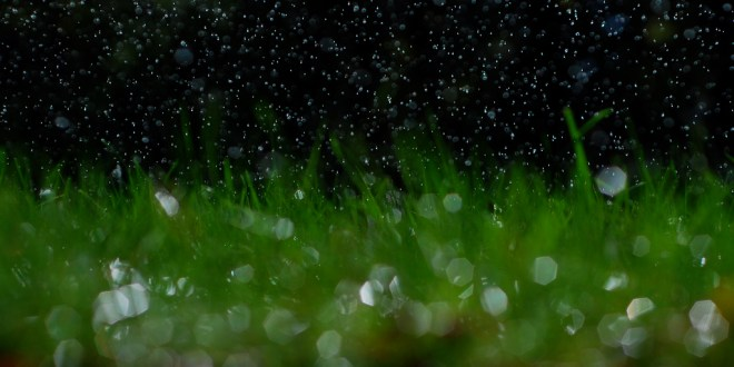 Killer Sprinklers: SNU's irrigation system