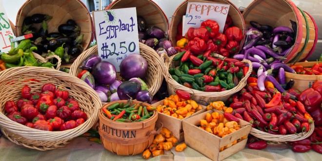 Taking Steps Toward Diet Awareness