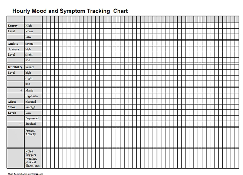 Hourly Mood and Symptom Chart Pennsylvania Echoes - mood chart form