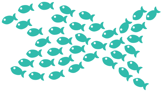 ecloo_swarm