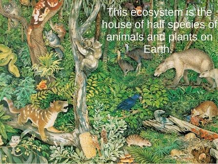 List of Different Types of Ecosystem With Example