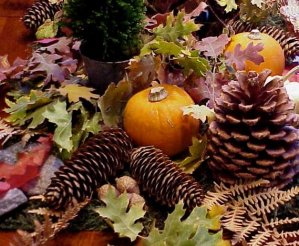 natural items for a fall Thanksgiving centerpiece