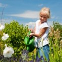 Eco – Friendly Garden Tips