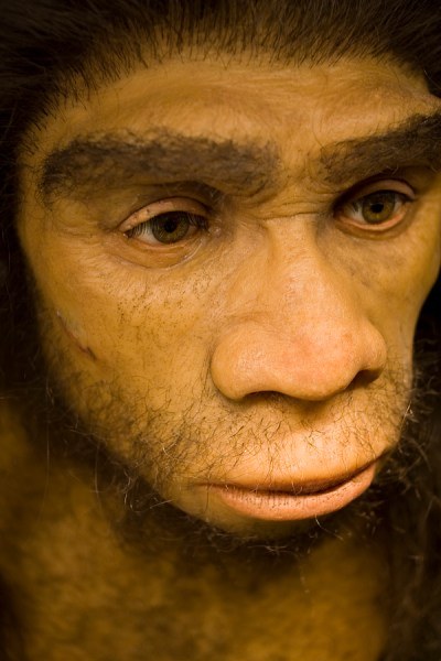 How long should we breastfeed?  Neanderthals breastfed for 7-15 months