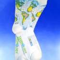 Unique green gifts:  Sock Grams global warming socks