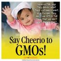 GMO-Free Cheerios in Europe, Why not in US?