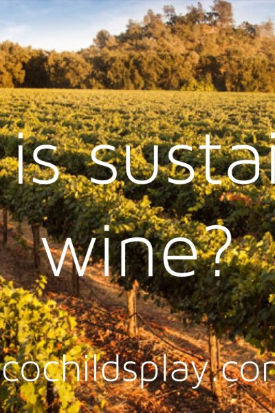 What is sustainable wine?