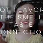 The Smell Taste Connection:  Got Flavor?