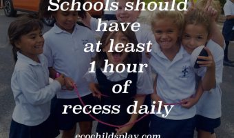 Schools should have at least 1 hour of recess daily