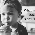 What is the best sippy cup?