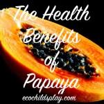Papaya's Health Benefits
