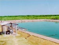solar ponds for trapping solar energy 9