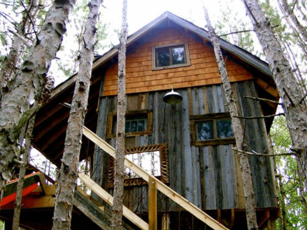 Tree House in Canada