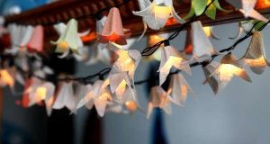 Egg carton Decorative lights