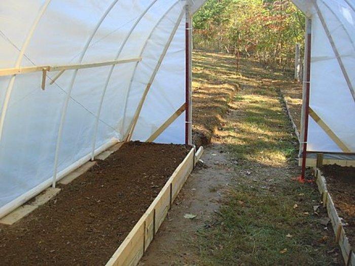 Como hacer un invernadero paso a paso for Plantas para invernadero