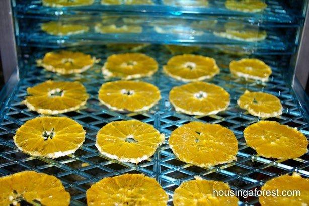Como hacer fruta deshidratada naranjas
