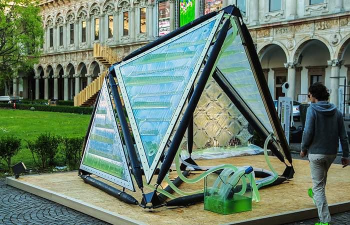 Urban Algas Canopy Milan