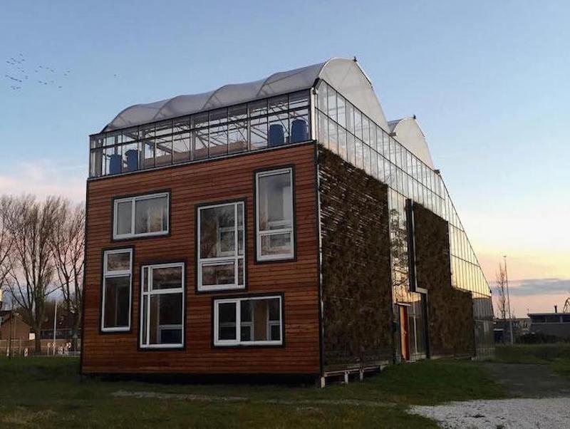 Familia holandesa vive en casa invernadero produciendo - Invernadero para casa ...