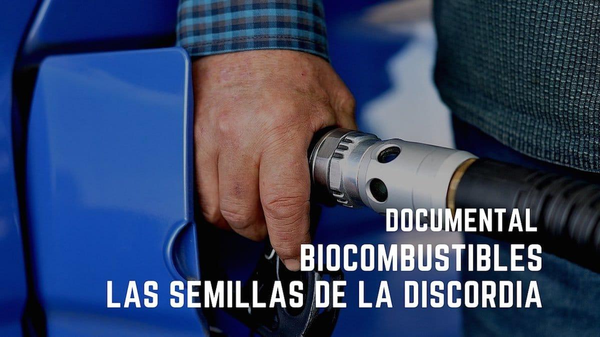 Biocombustibles, las semillas de la discordia