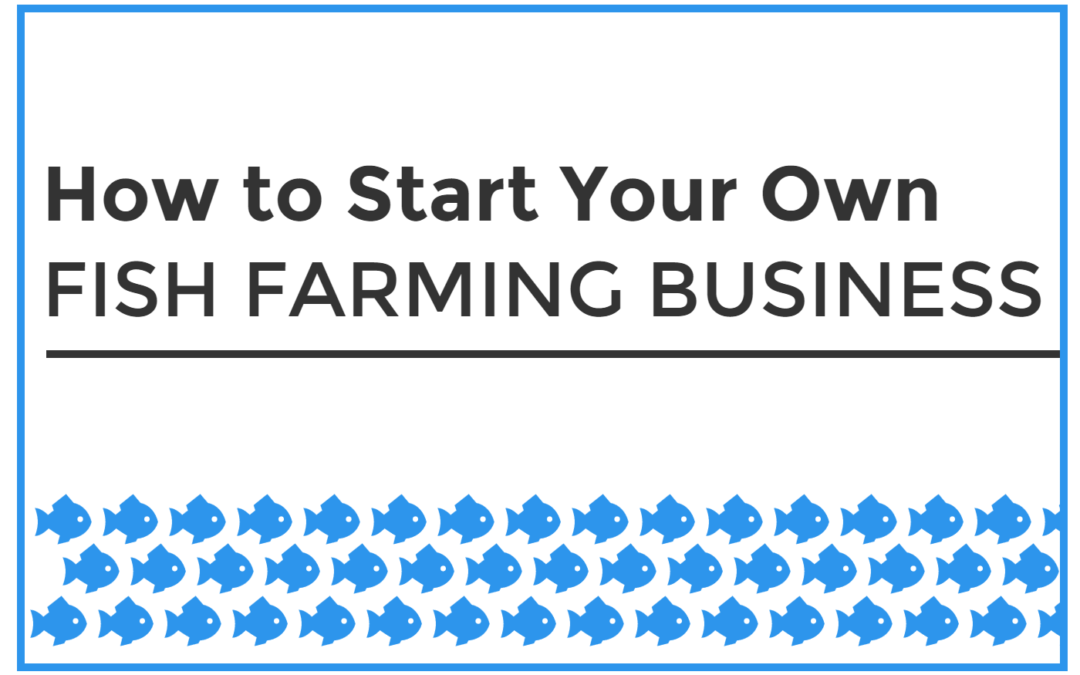 Sample business plan on fish farming free resume samples for How to start fish farming