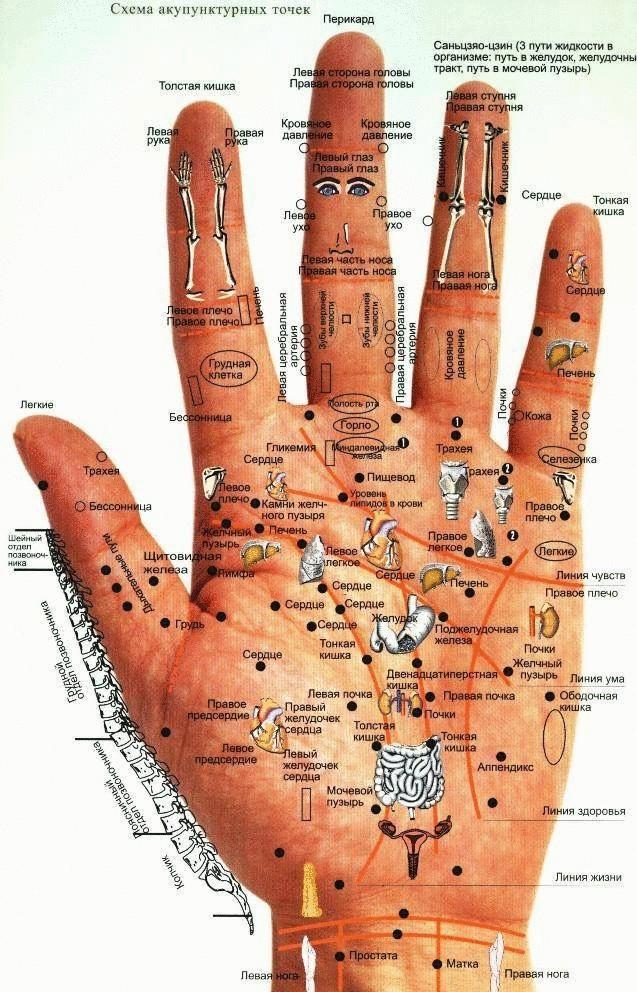 Картинки по запросу Массаж кистей и пальцев рук