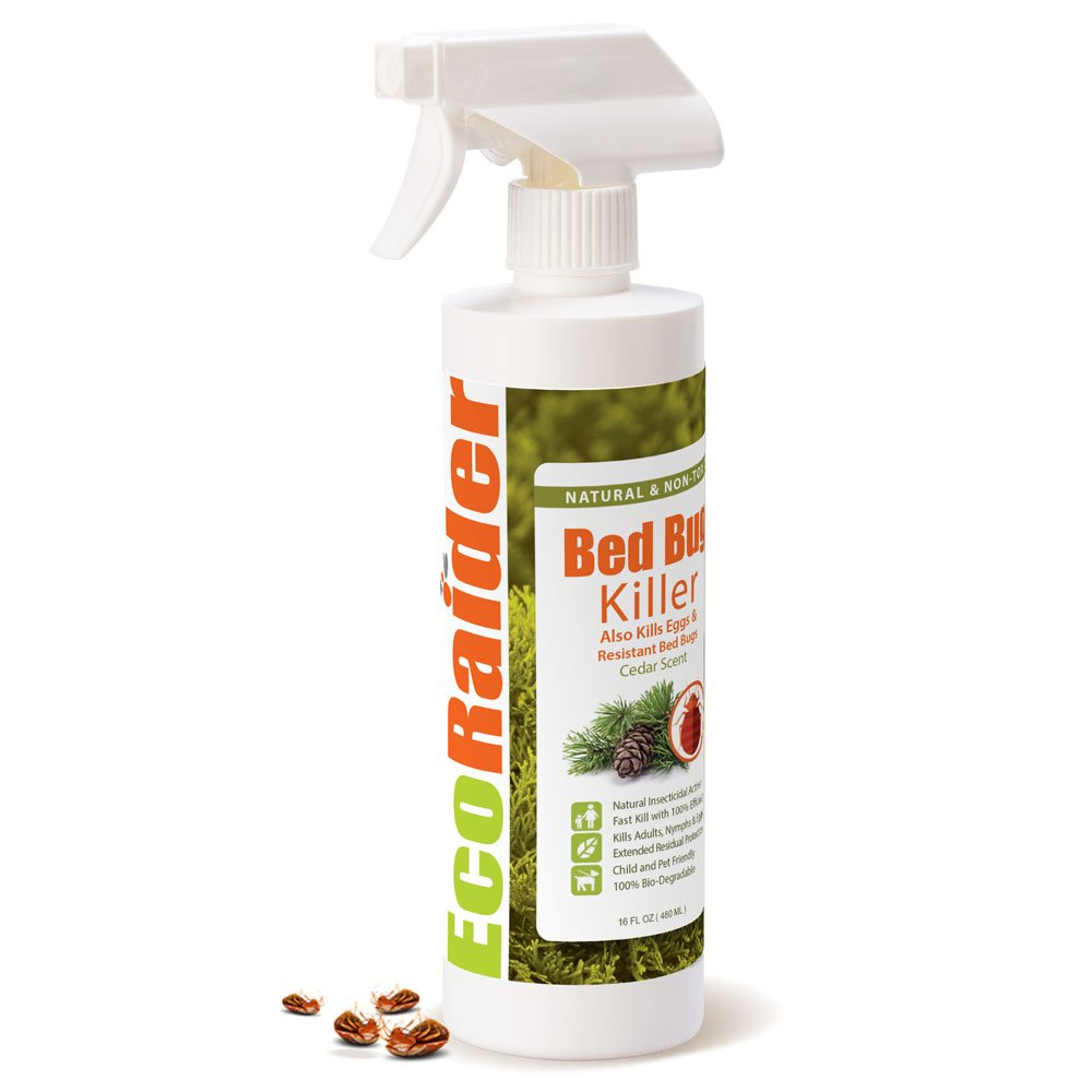 Sprays For Bed Bugs Bed Bug Egg Killer Spray 16oz