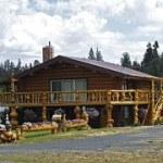 Nachhaltiges Bauen mit Holz