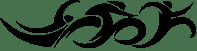logo-triatlon-club-2015