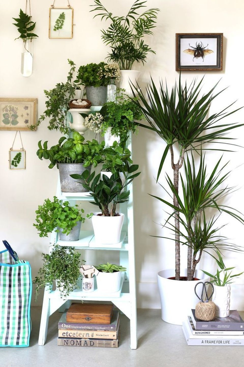 Salon De Jardin 12 Places Cool Plant Stand Design Ideas For Indoor Houseplants