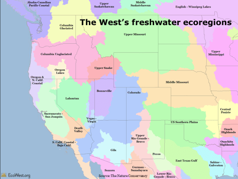 Freshwater ecoregions of the American West