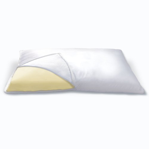 Sleep Innovations Memory Foam Classic Pillow, King