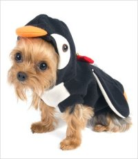 """Penguin Costume for Dogs - Size 6 (16"""" l x 20.5"""" - 23.25 ..."""