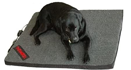 Best Beds For Dogs With Arthritis Bed Mattress Sale